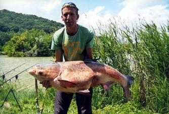 Dorn Ernő_busa 38kg-120cm_2013