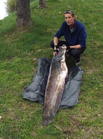 Dorn Ernő_harcsa 34kg_2012